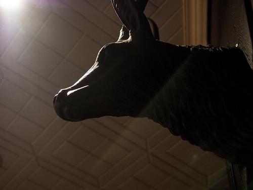 Tate墙上有个性的鹿头