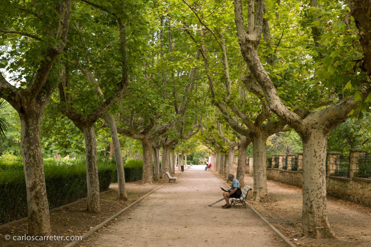 Parque Grande