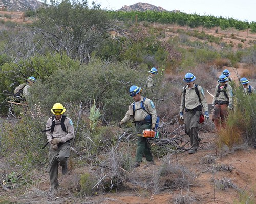 Veterans Find Training, Jobs With The Us Forest Service