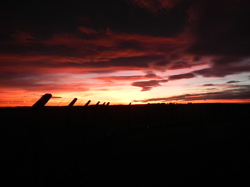 Winning sunset