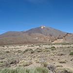 Centro-Teide-05