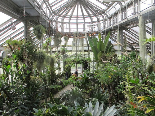 botanical garden - berlin