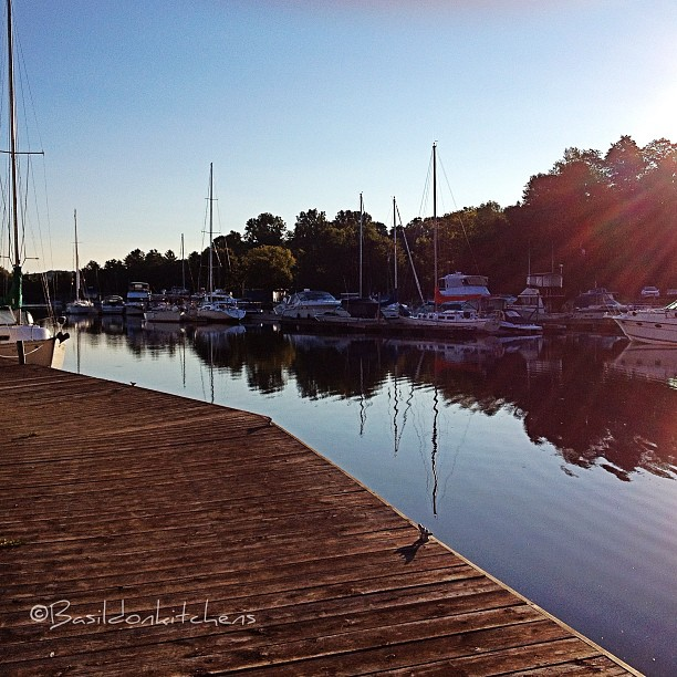 """Aug 15 - the best {early morning light is """"the best""""} #fmsphotoaday #sunrise #morning #pictonharbour #princeedwardcounty #boats #sailboats #water #bayofquinte"""