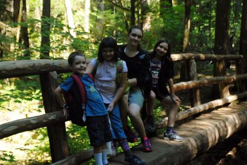 Kids on log bridge across river