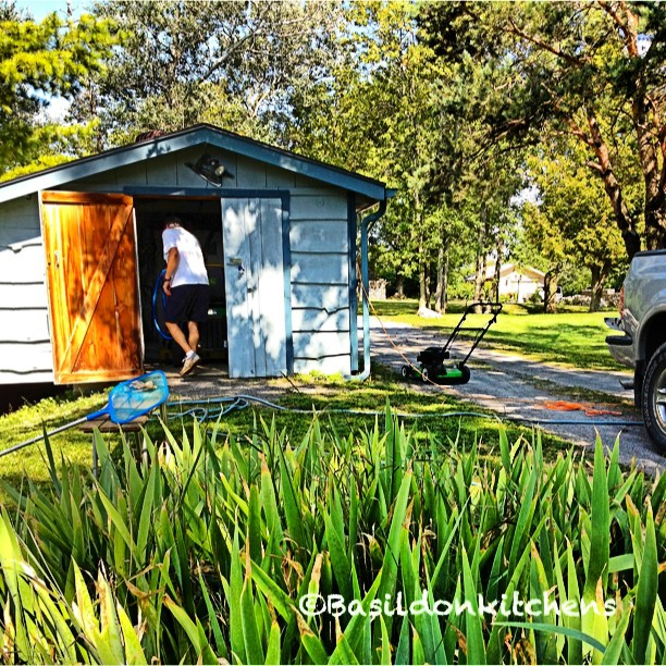 Aug 18 - forgiveness {this one is tough until I heard hubby tell me to 'forgive' the mess while maintaining the yard}  #photoaday #lawn #yardwork #lawnmower #garden