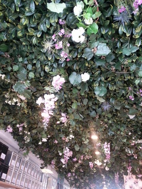 Lily of the Valley tea shop,  Paris