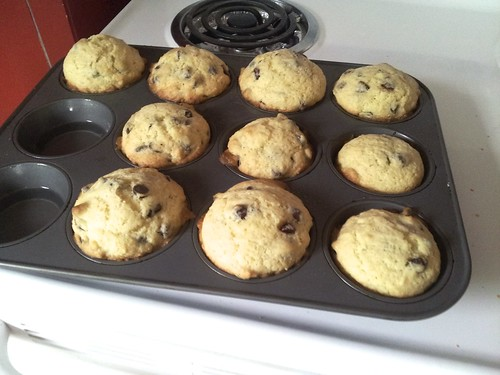 Chocolate Chip Muffins 7
