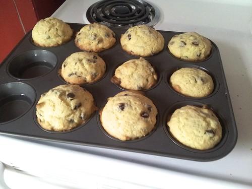 Chocolate Chip Muffins 7
