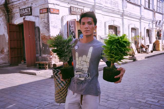 The Plant Vendor