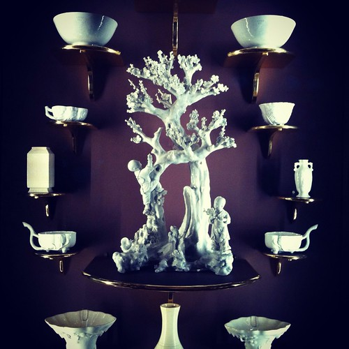 Beautiful tree and cups