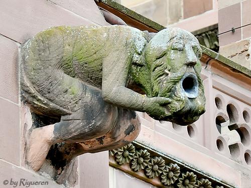 Munster, Freiburg: Gargoyle