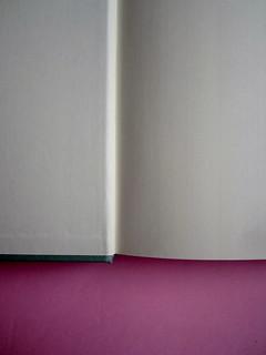 Chris Adrian, La grande notte. Einaudi 2013. [resp. gr. non indicate]; alla cop.: Sean Boggs/Vetta/Getty Images. carta di protez alla cop e c. di guardia (part.), 1