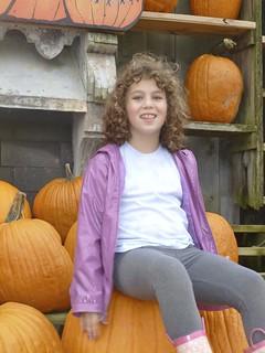 Pumpkin-sitter