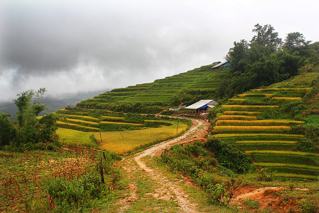 Sapa - on the way to Ta Phin village