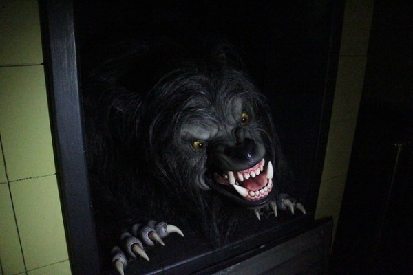 An American Werewolf in London at Universal Orlando