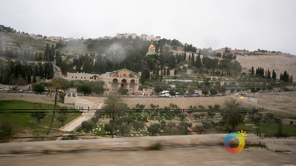 Day 5- Garden of Gethsemane - Our Awesome Planet-42.jpg