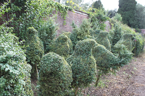 20130821_6501-Rodmarton-Manor-bird-topiary copy