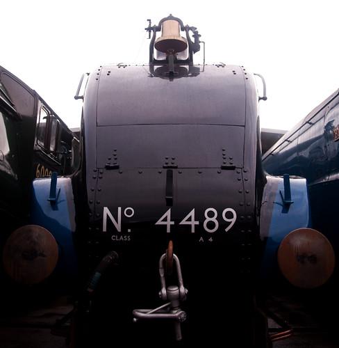 DSC_7011