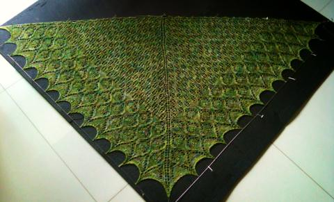 Spring Things Shawl on the block!