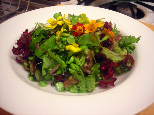 Field and forest salad (Red Russian kale, Lollo Rosso heirloom lettuce, English peas, micro greens, edible marigold flowers, white wine vinaigrette)