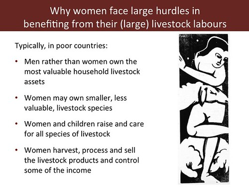 Slide 7: 'Women and Livestock', 7 Mar 2014