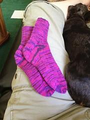 Sock set