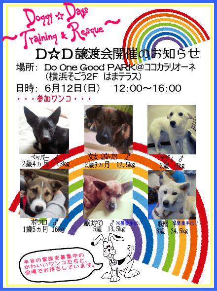 20160612_satooyakai_dd
