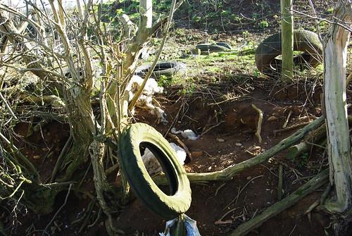 20120219-08_Rubbish - Manor Farm - Clifton Upon Dunsmore by gary.hadden