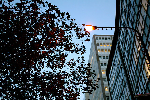 Monday: dusk