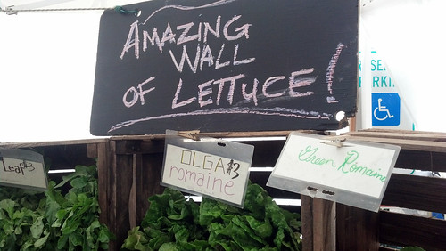 Amazing wall of lettuce!