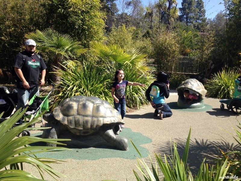 Oakland Zoo (8)