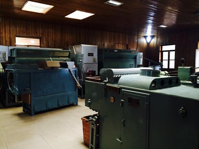 Эта фабрика специализируется на выпуске зеленых чаев по японской технологии