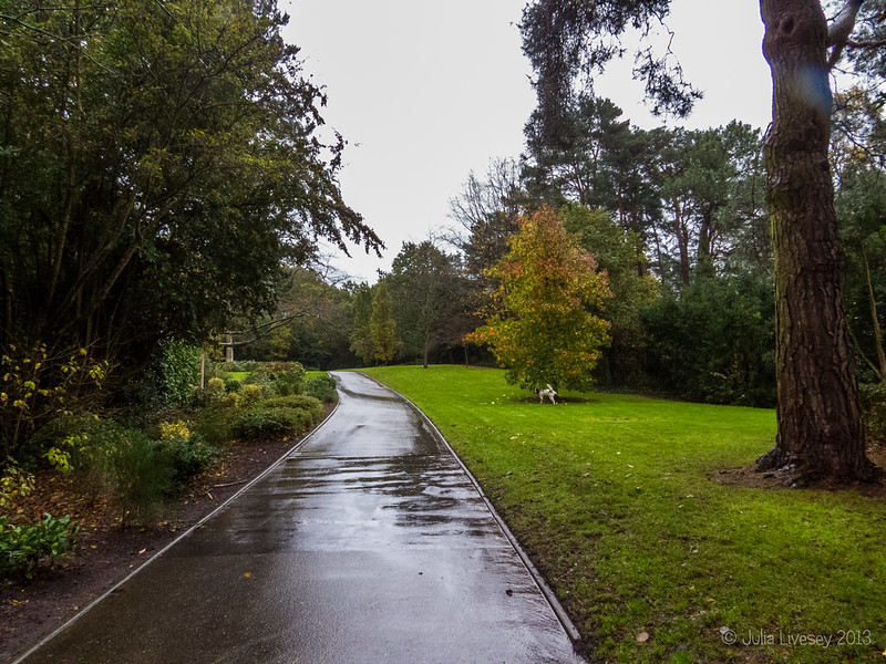 A wet morning at Broadstone Rec.