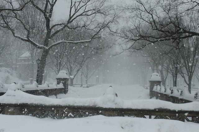 Poet's Walk | Central Park