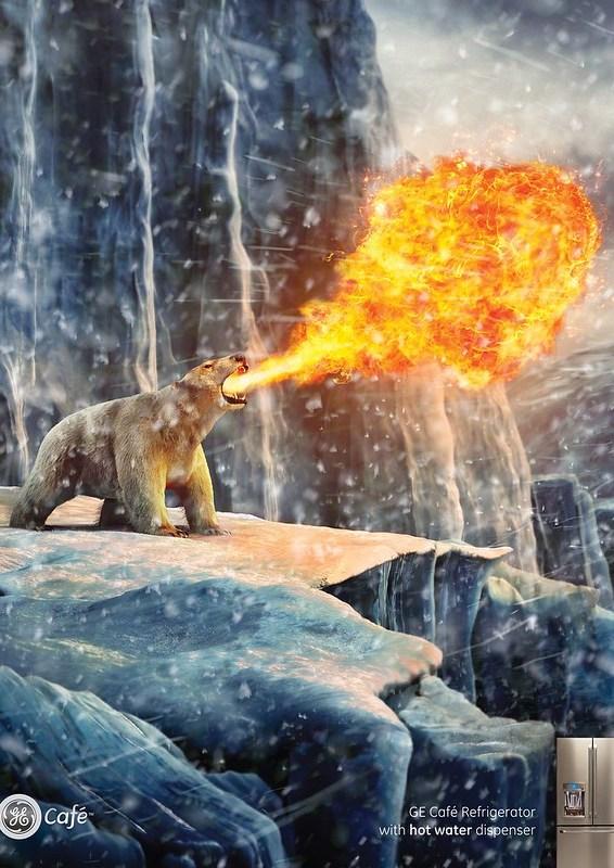 GE - Polar bear hits