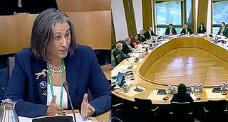 Moi Ali Scottish Parliament Petitions Committee