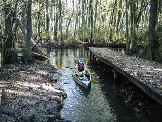 South Edisto River-017
