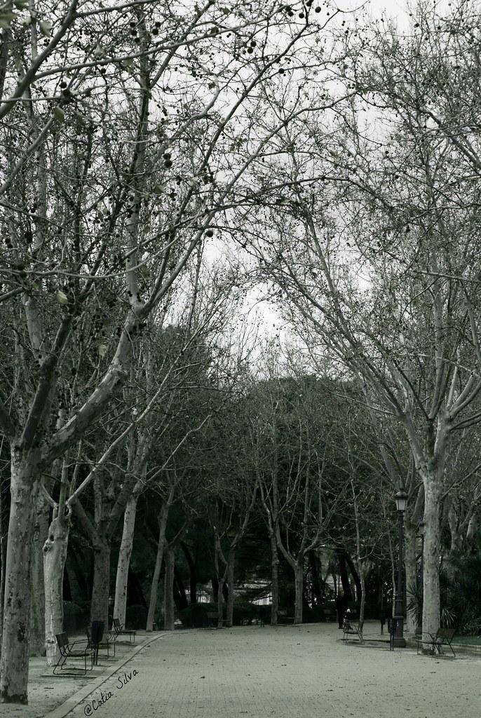 Around Madrid (6)
