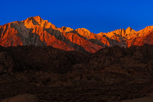 Layered Lone Pine Light