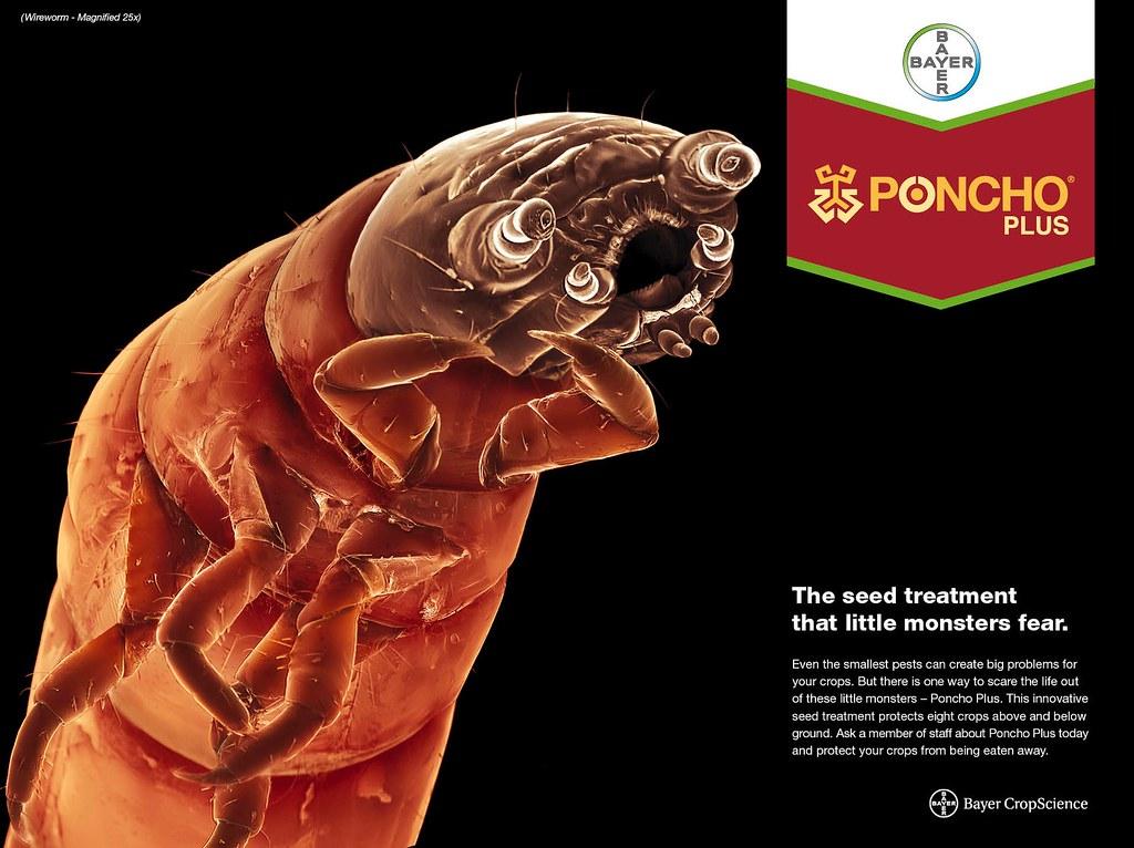 Poncho Plus - Wireworm