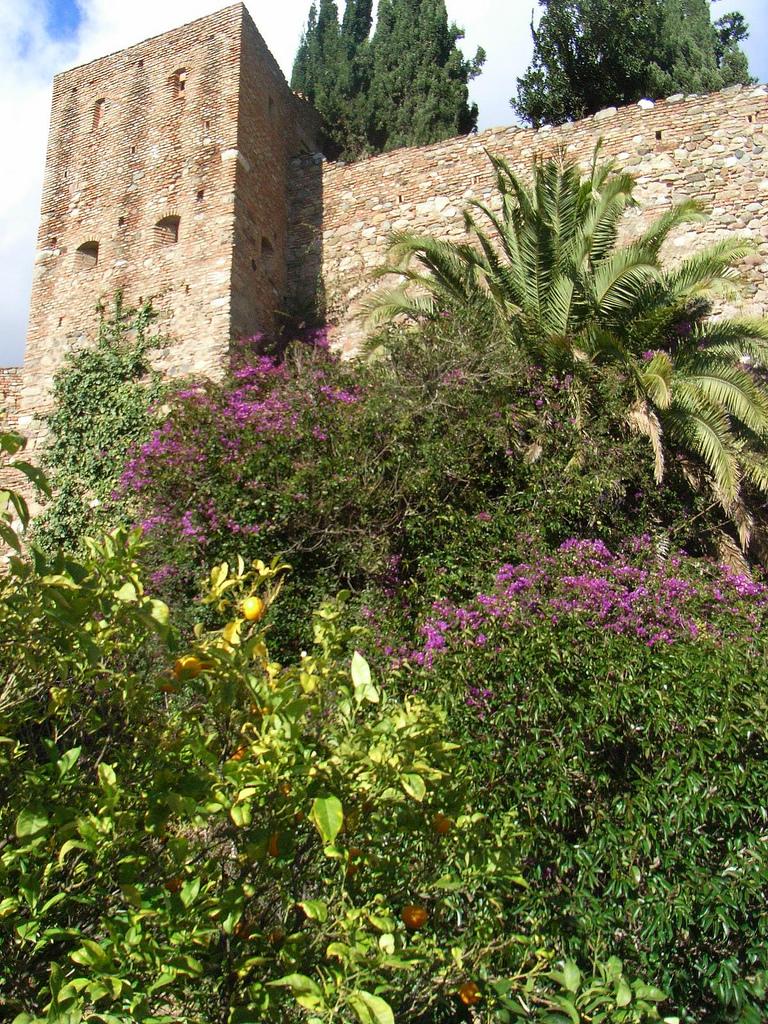 Las murallas de la alcazaba de Málaga. Autor, Clive Hicks