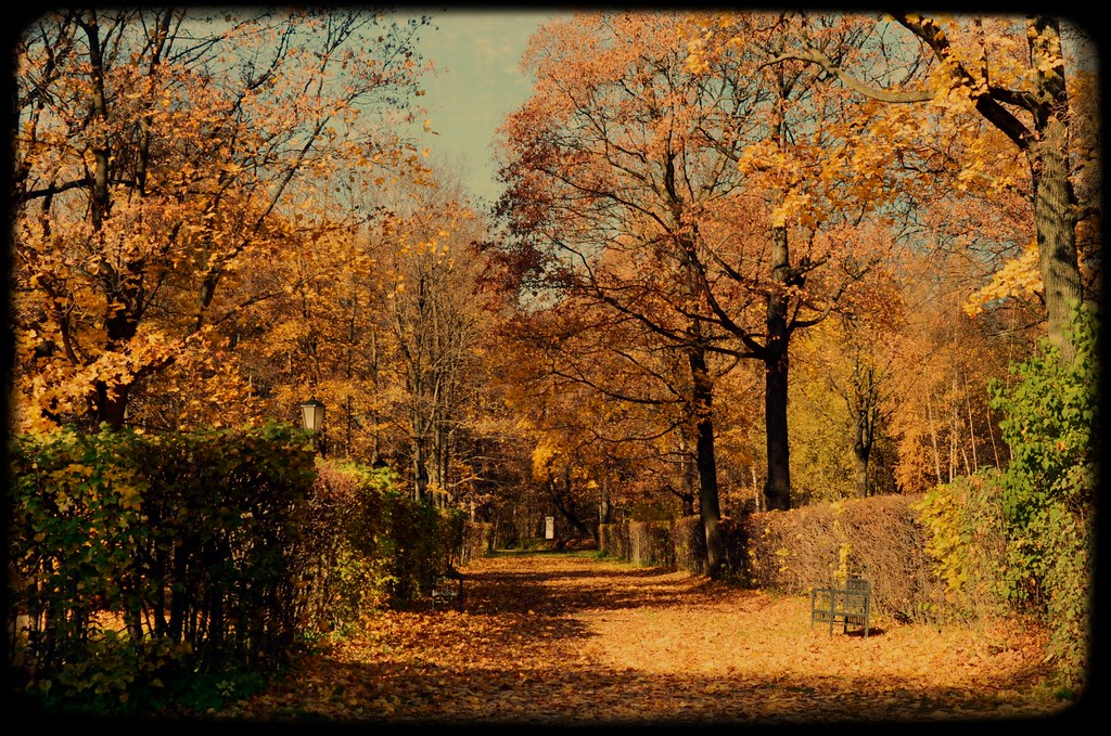 autumn in moscow golden time