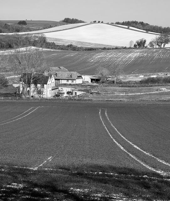 Buriton Farm and Pen Hill.jpg