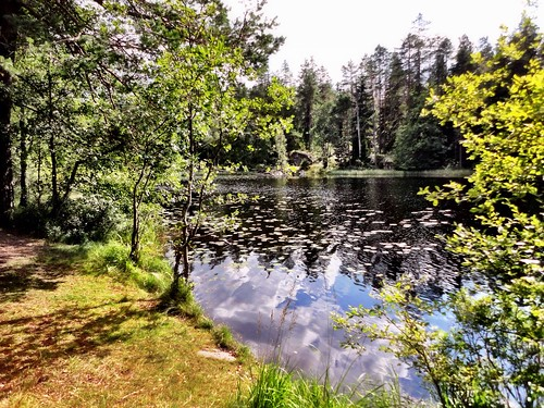 Tilveden National Park by SpatzMe