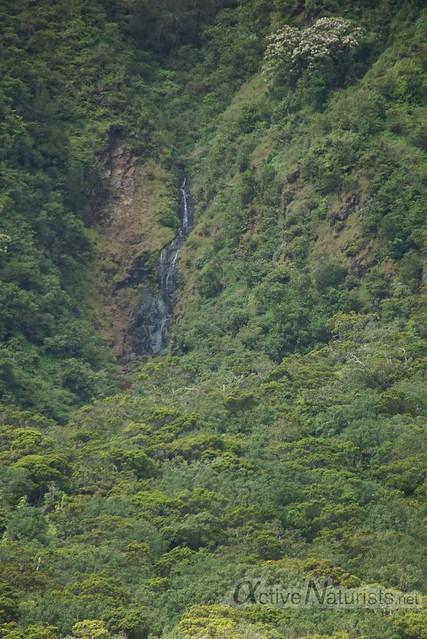 view 0004 Iao valley, Maui, Hawaii, USA