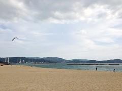 和歌山は和歌浦の海