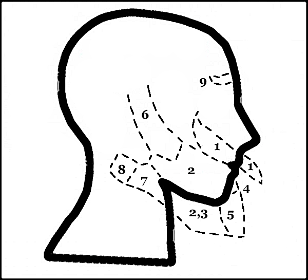 Afternoon Map: Mapping the Facial and Spacial Geography of