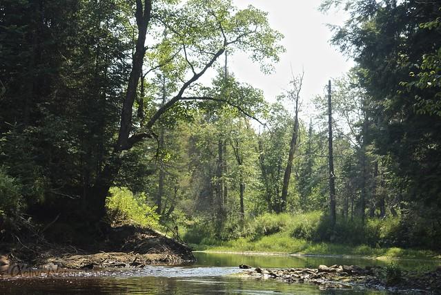 view 0001 Sacandaga River, Adirondack, NY, USA