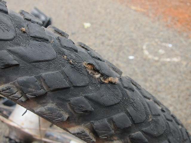 Tire Gash