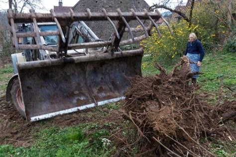 Prepare the soil for the vegetable garden